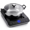 PENSONIC INDUCTION COOKER-PIC20